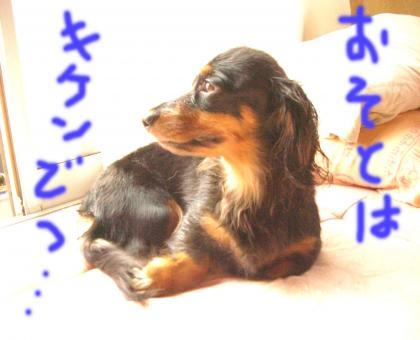 osoto_convert_20080707201134.jpg