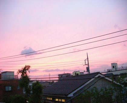 suteki_convert_20080616220337.jpg