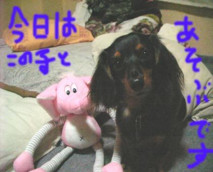 zou_convert_20080609213413.jpg