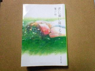 080718_blog_pic.jpg
