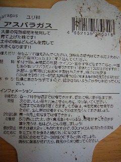 P1000098.jpg