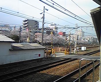 20080405024648
