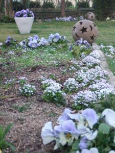 2008-03-16_19.jpg