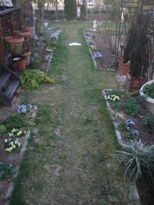 2008-03-17_01.jpg