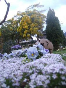 2008-03-26_19.jpg