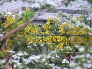 2008-03-26_20.jpg