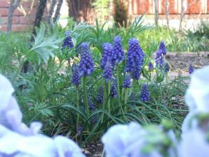 2008-04-01_08.jpg