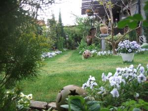 2008-04-25_06.jpg