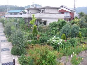 2008-05-05_71.jpg