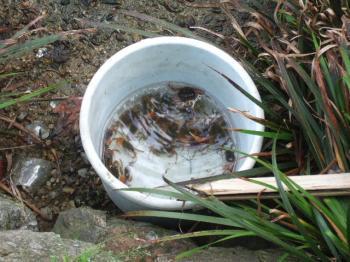 2008-05-12_08.jpg