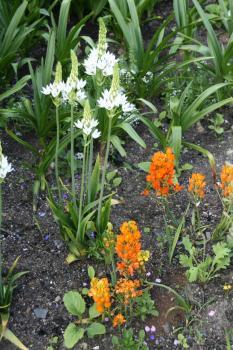 2008-05-27_99.jpg