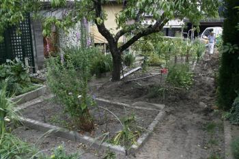 2008-07-12_00.jpg