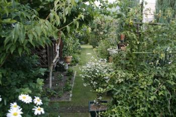 2008-07-13_02.jpg