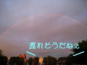虹渡れそう