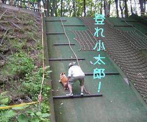 登れ小太郎