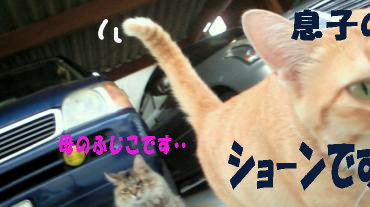 ショ-ン2