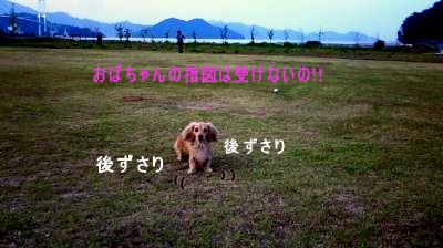 K3_20080627104211.jpg
