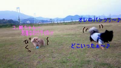 K5_20080627104237.jpg