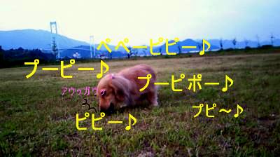 K6_20080627104228.jpg