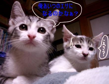 blog_jun5.jpg