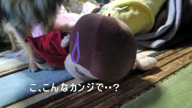 fukuda_20080704142906.jpg
