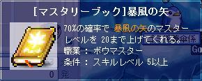 080729 暴風の矢20