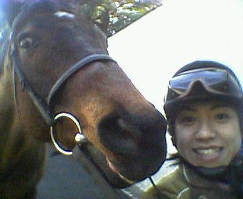 0303horse1.jpg