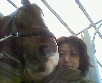 0303horse2.jpg