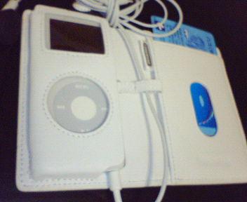 iPod1.jpg