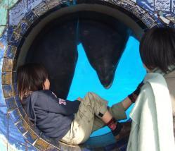 2008年3月18日イルカと友達4