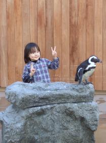 2008年3月18日ペンギン