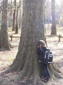 2008年3月22日木