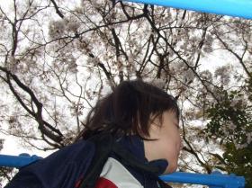 2008年4月3日ジャングルジムの