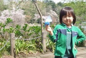 2008年4月5日折り紙
