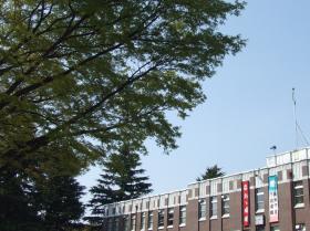 2008年4月6日大学