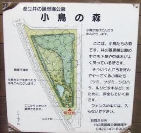 2008年5月6日森の看板