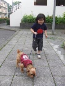 2008年5月17日もんちゃんと散歩