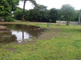 2008年5月19日井の頭公園