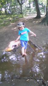 2008年5月21日井の頭公園