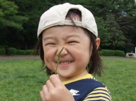 2008年5月25日草相撲