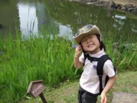 2008年6月1日杜若
