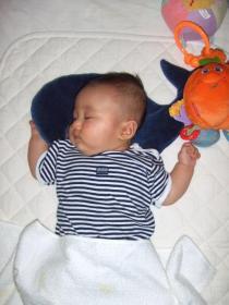 2008年6月13日ネンネ