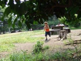2008年6月14日カクレンボ