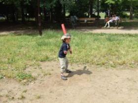 2008年6月15日野球1