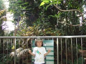 2008年7月16日温室