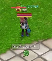 20060326_1.jpg