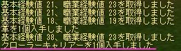 20060406_10.jpg