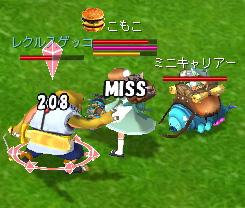 20060420_2.jpg