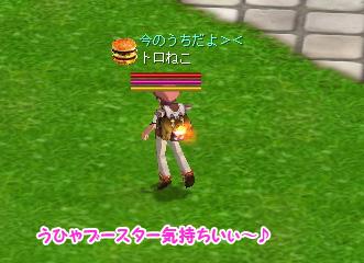 20060512_10.jpg