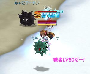 comoko_job2_1.jpg